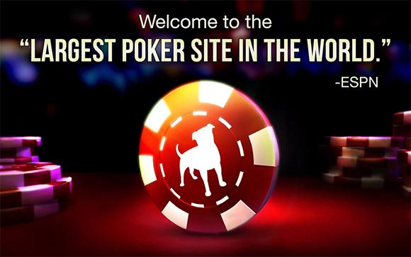 zyanga poker1