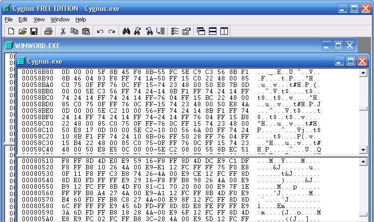 cygnus hex editor