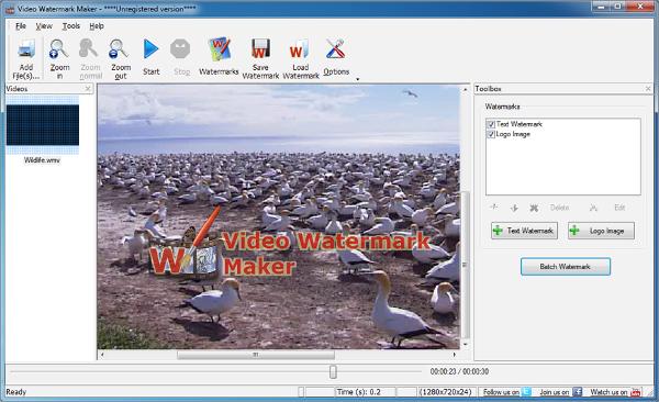 watermark video software1
