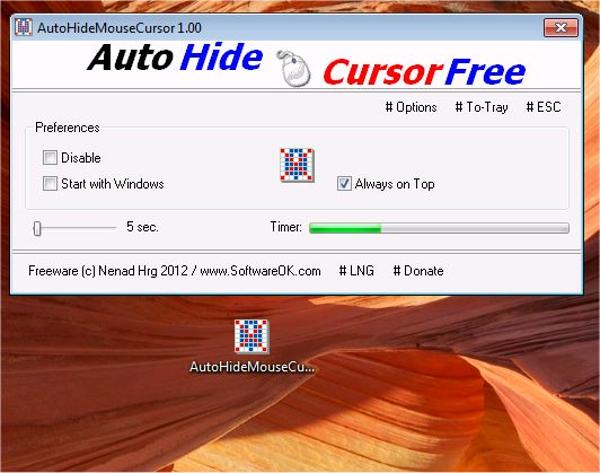 auto hide mouse cursor