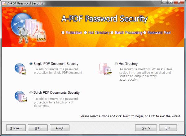 a pdf password security