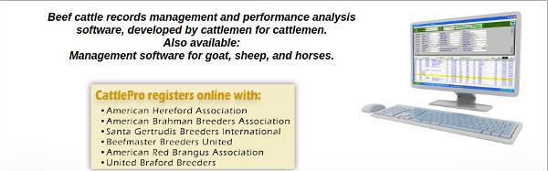 cattle pro