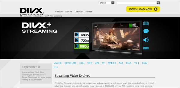 divx streaming
