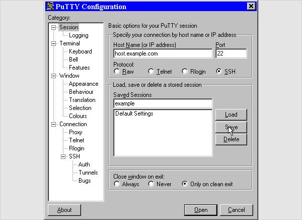 putty1
