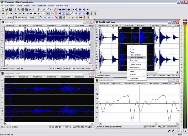 wavosaur free audio editor1
