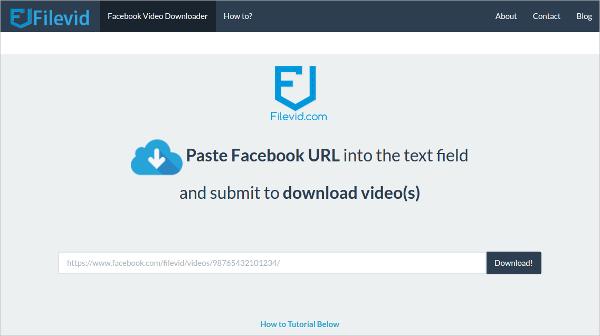 12+ Best FB Video Downloader Free Download for Windows ...