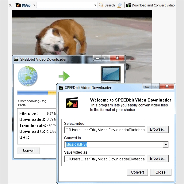 speedbit video converter