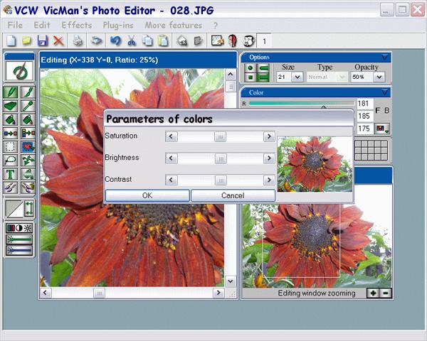 vcw vicmans photo editor
