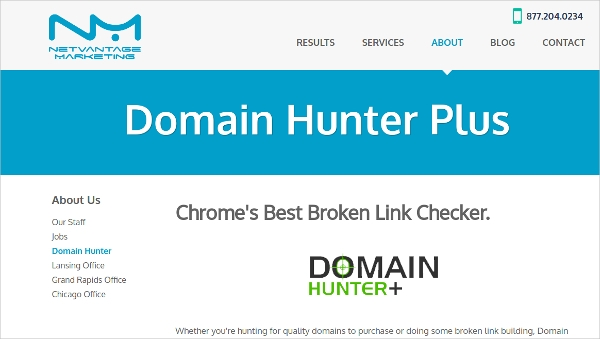 domain hunter
