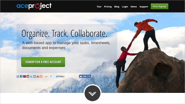 aceproject