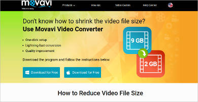 movavi video converter most popular software
