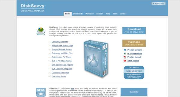 disksavvy most popular software