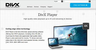 divx player1