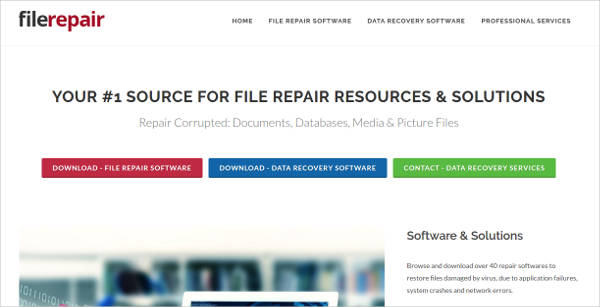 file repair most popular software