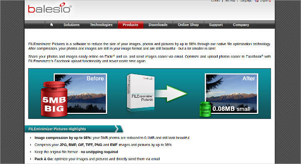 fileminimizer pictures most popular software