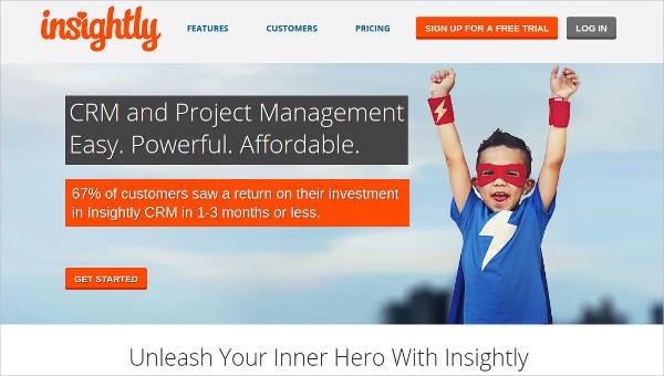 insightly most popular software1