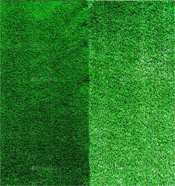 high quality grass texture1
