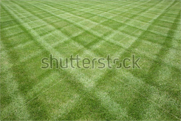 psd grass cutting patterns