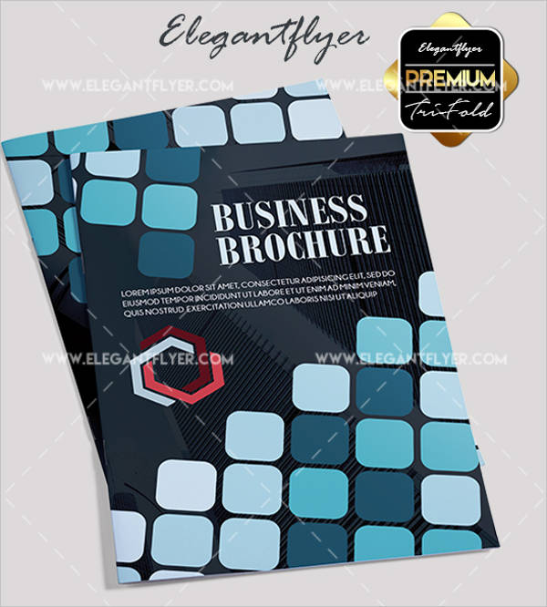 company brochure1