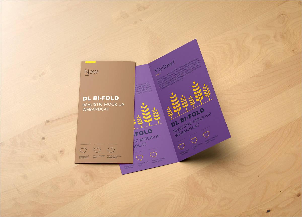 dl bi fold brochure