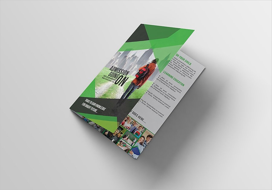 education bifold brochure