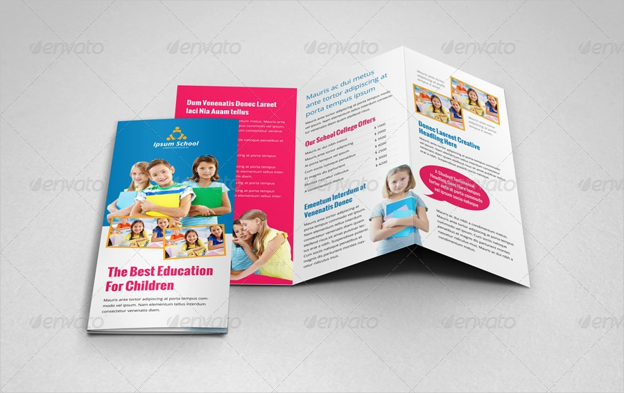 school education trifold brochure