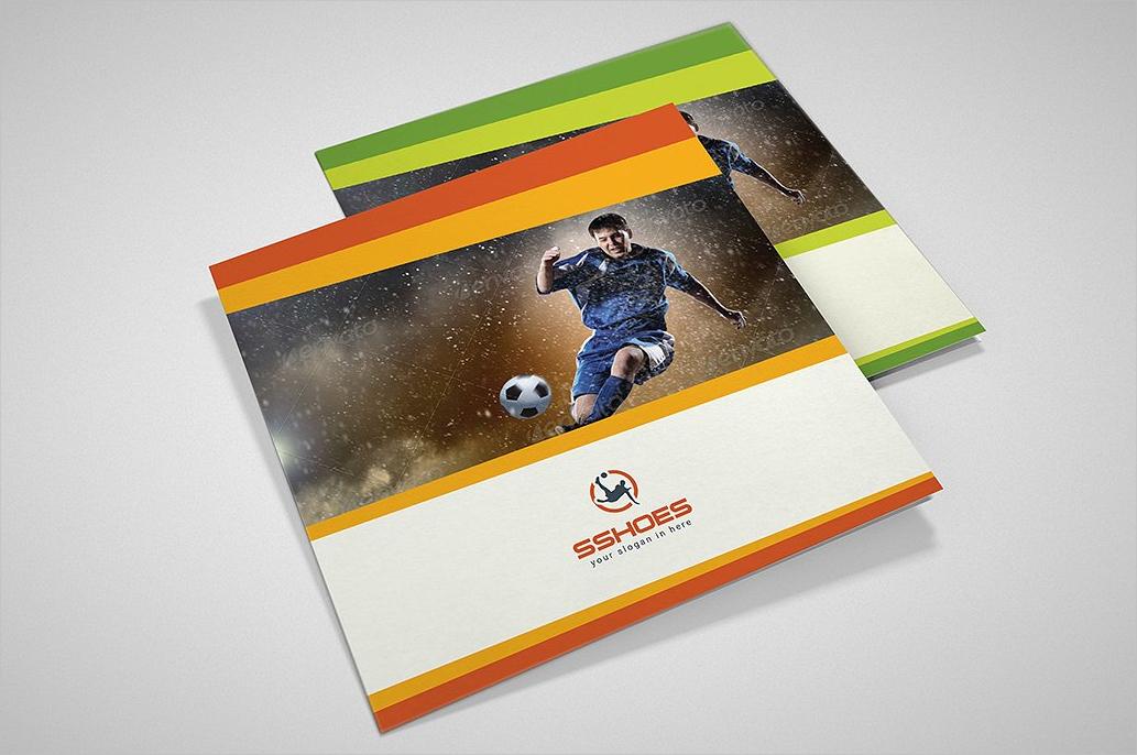 tri fold sports brochure