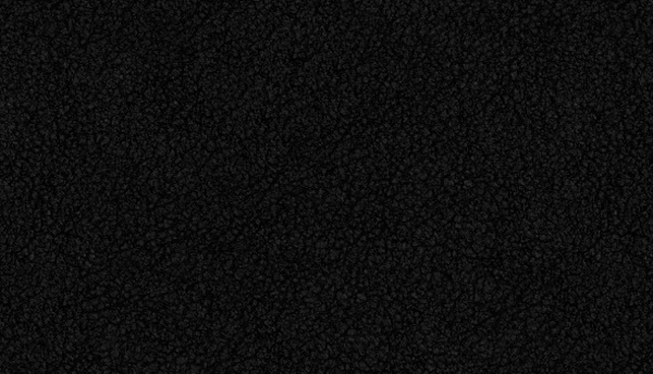black leather2