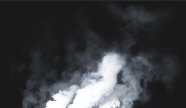 clean smoke brushes
