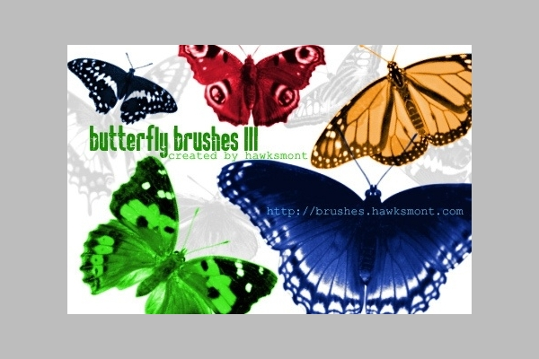 floral butterfly photoshop brushes