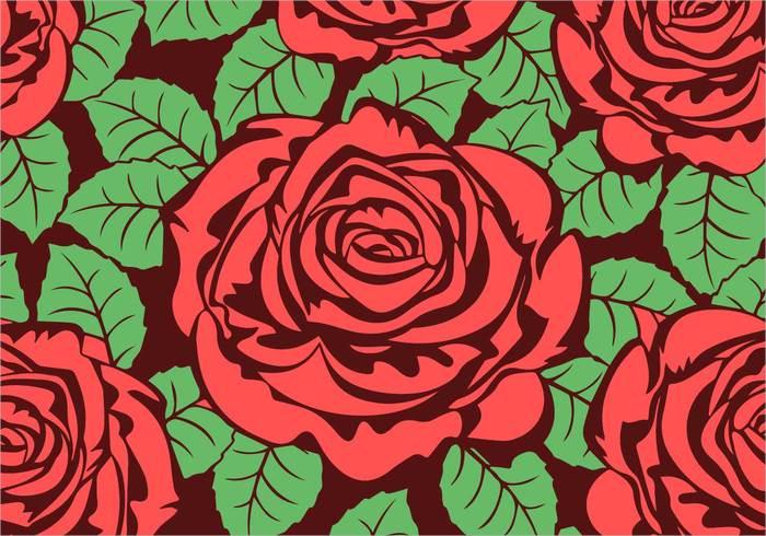 rose flower1